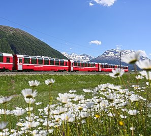 Bernina Express im Oberengadin
